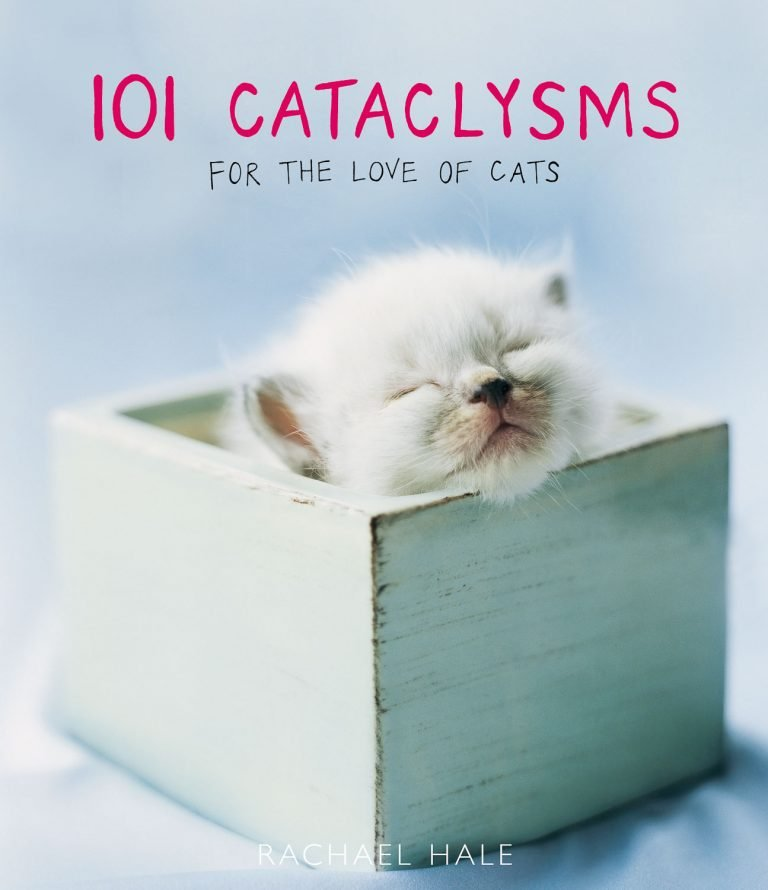 101 Cataclysms cover