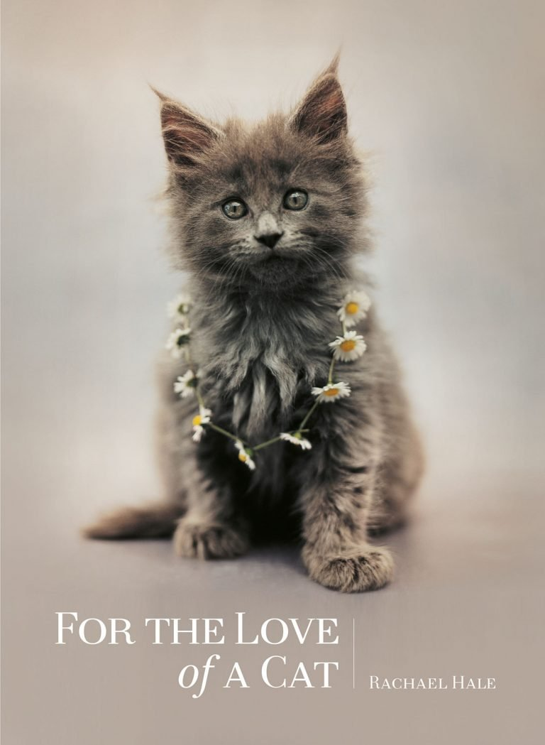 For the Love of a Cat_Flexicover_HT