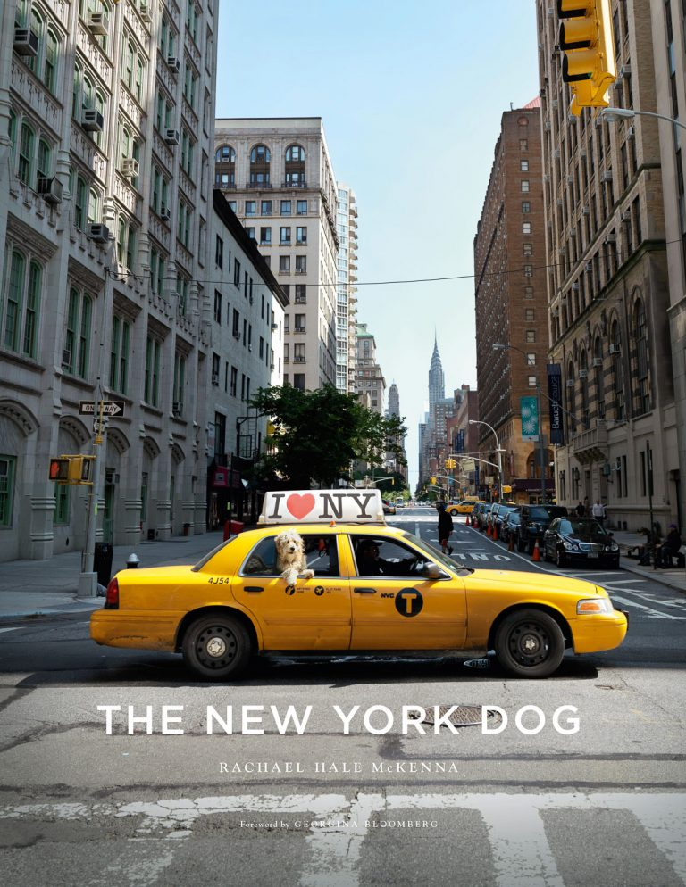 NY Dog_Jkt_AB